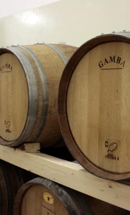 Barile-vino